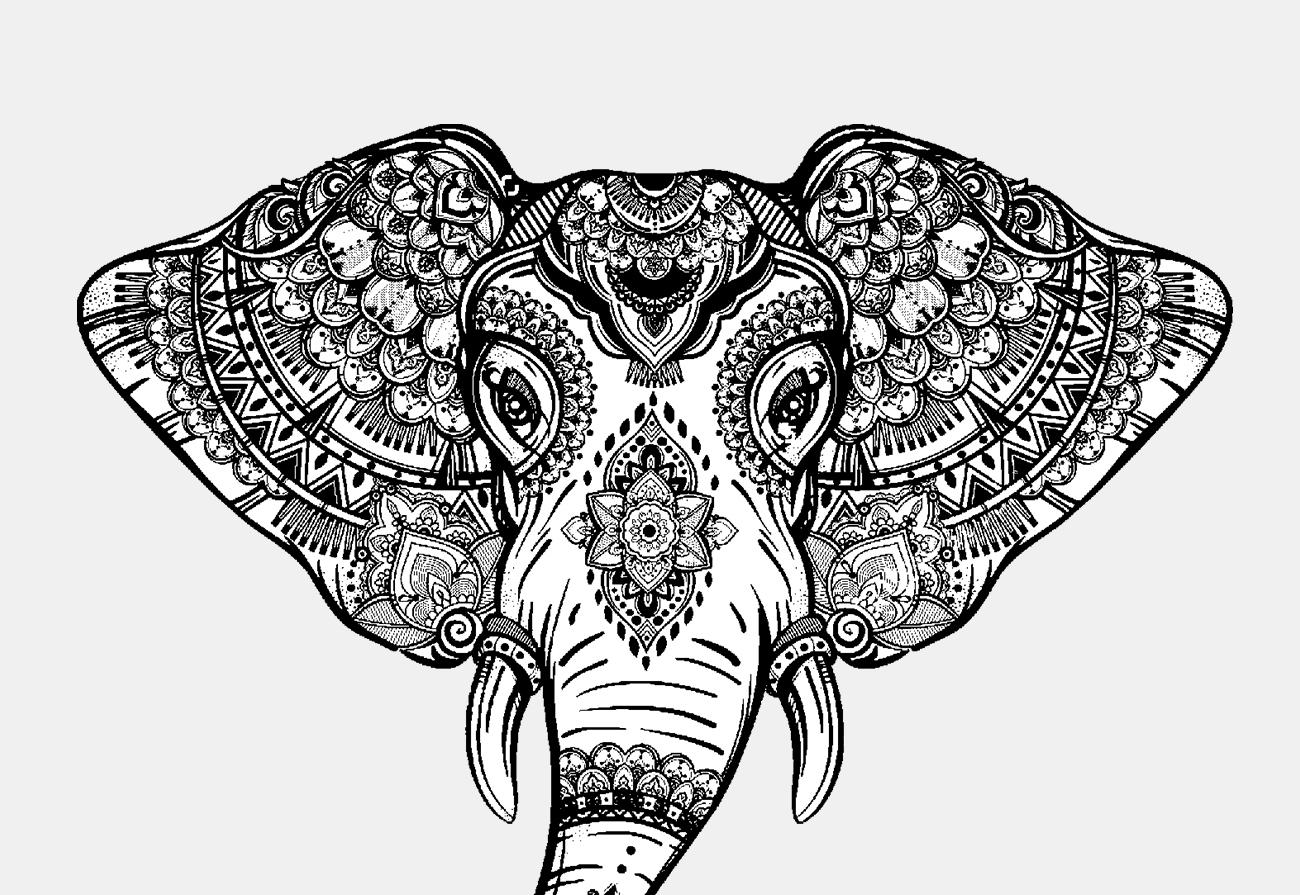 Particolare elefante