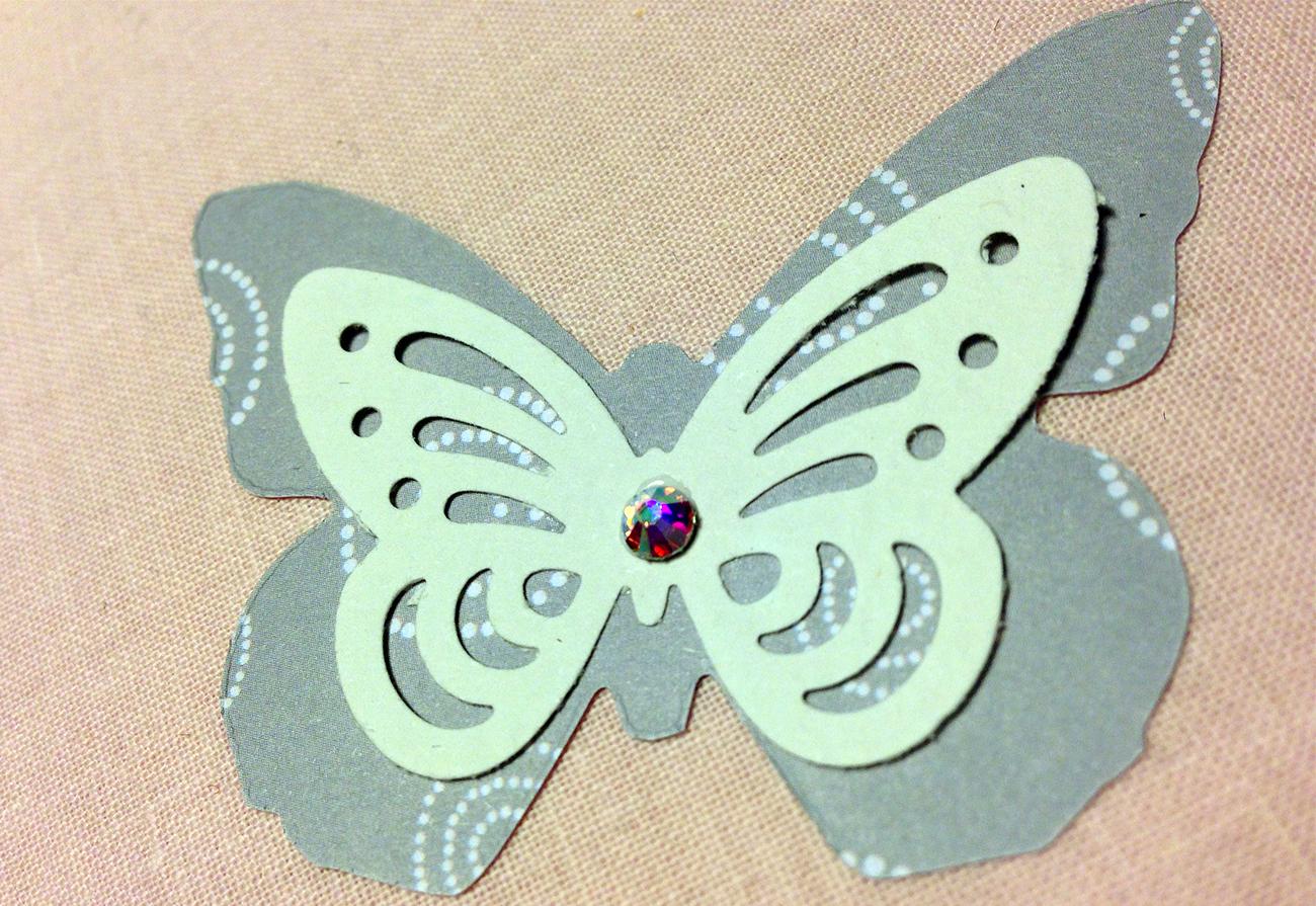 partic farfalla