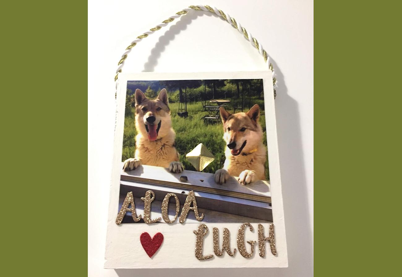Aloa e Lugh